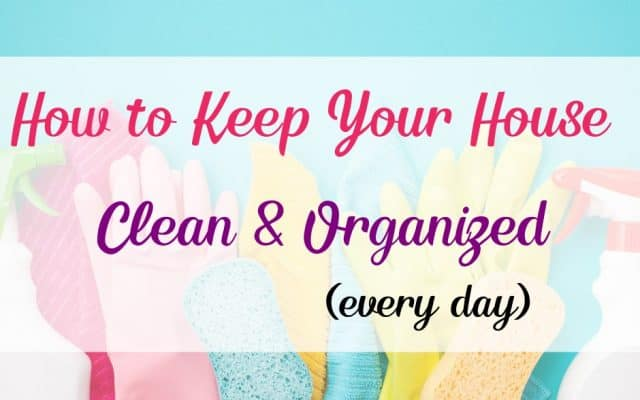 cleaning gloves, sponges, and spray bottle for cleaning